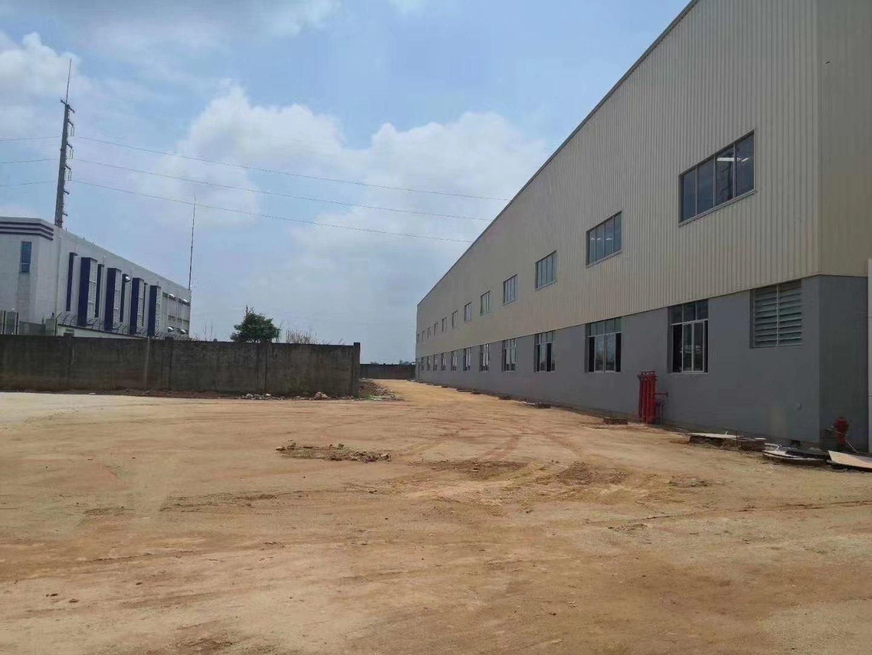 园洲镇新出独院钢结构厂房10300平方出售