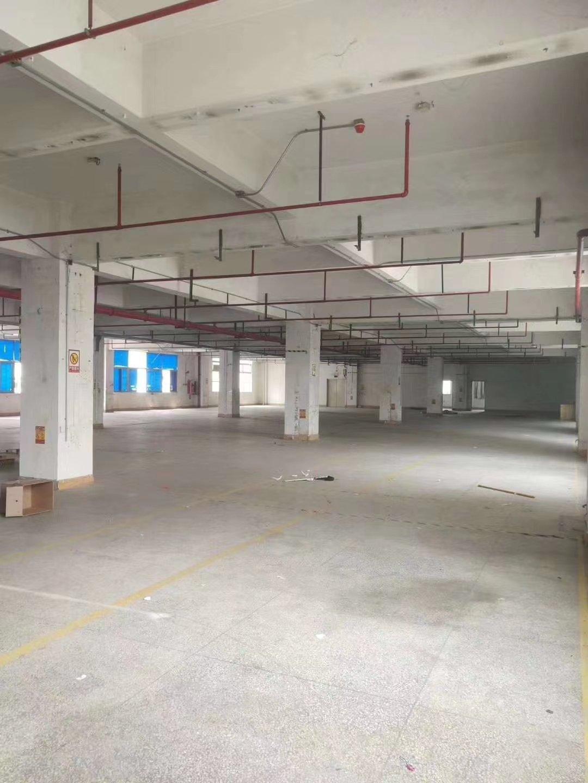 盐田沙头角红本工业园区厂房2350平招租