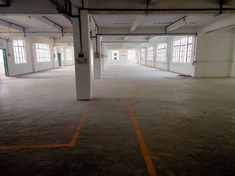 白云区龙归附近独门独院厂房出租,共5000方可以分租-图2
