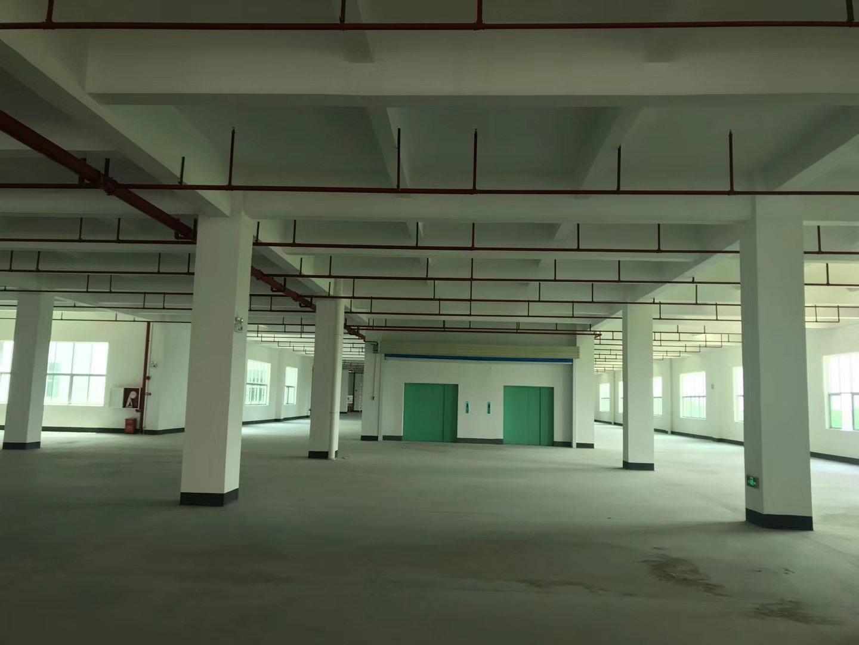 广州市花都区成熟工业区新出独栋面积7200㎡