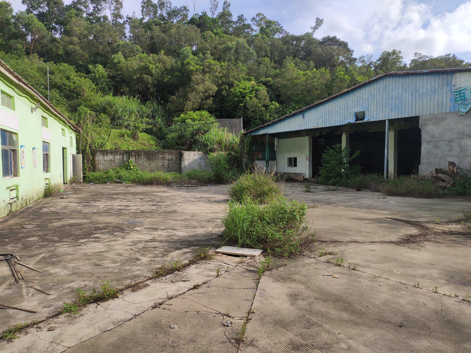 葵涌独院钢构厂房一楼出租,适合仓库