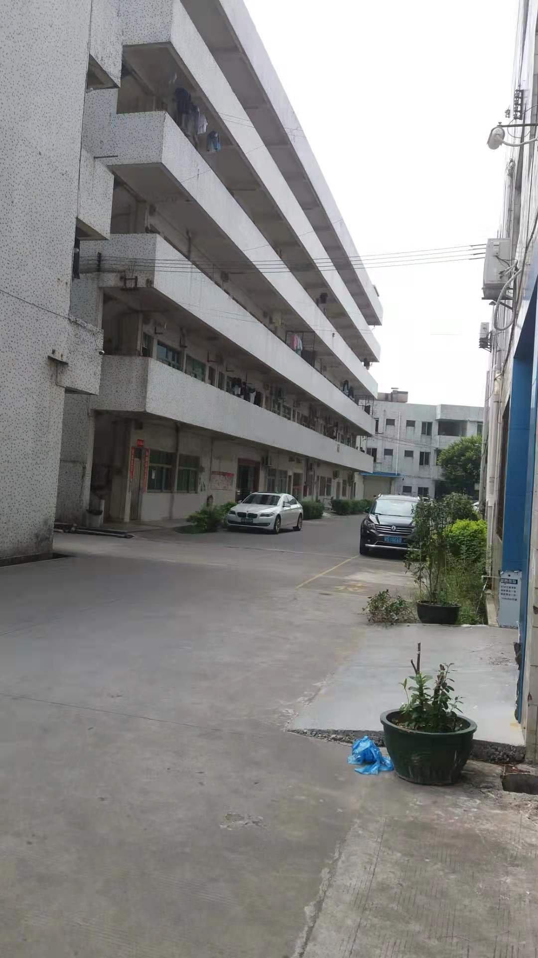 广州花都占地11亩建筑7000㎡国有精品独院厂房出售