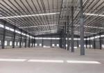 江门新出单层厂房15000方空地20000方带10吨航车!