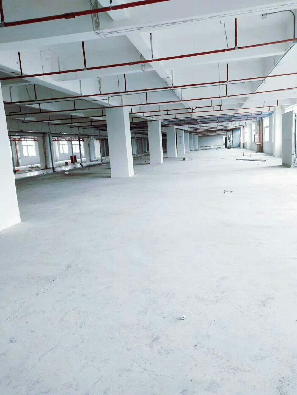 深圳龙岗布吉布澜路新出楼上850平园区空地大高速路口出租