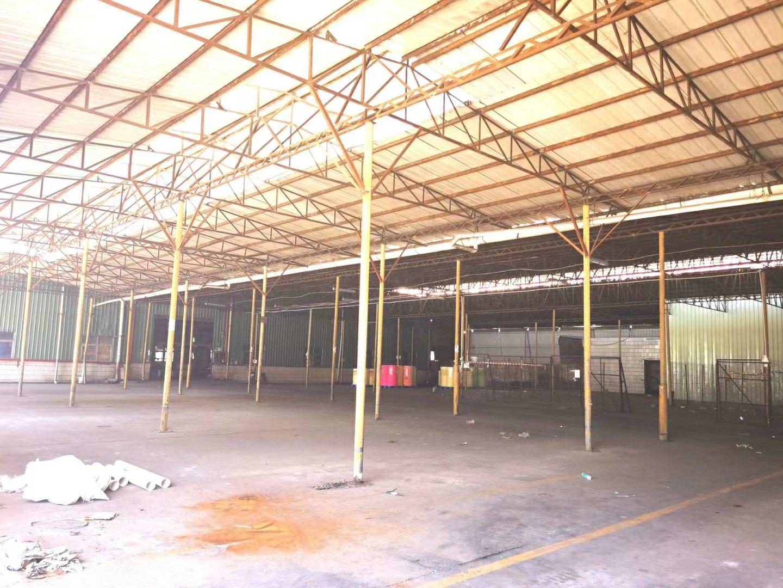 龙平西路钢构单独院5000平方厂房出售,价格便宜,园区空地大