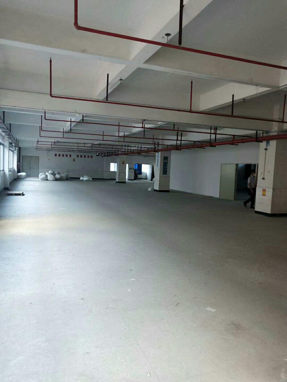 深圳龙岗布吉丹平快速路口新出楼上520平园区形象好位置好出租