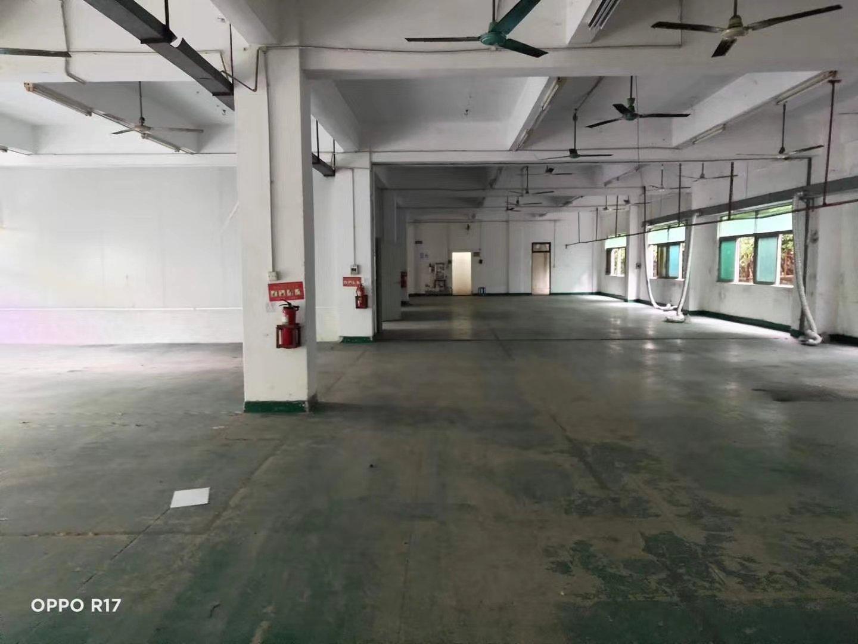 龙华区观澜附近新出独门独院厂房招租。