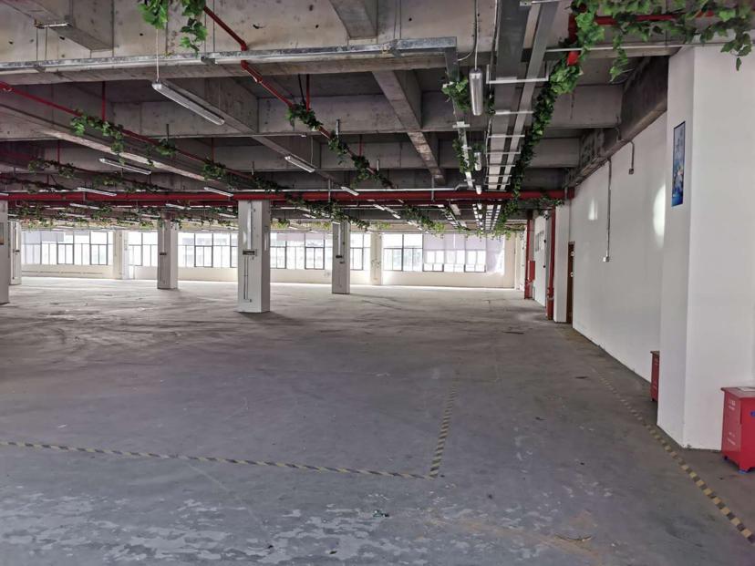 黄埔区东区花园厂房三楼500平方只要20块出租