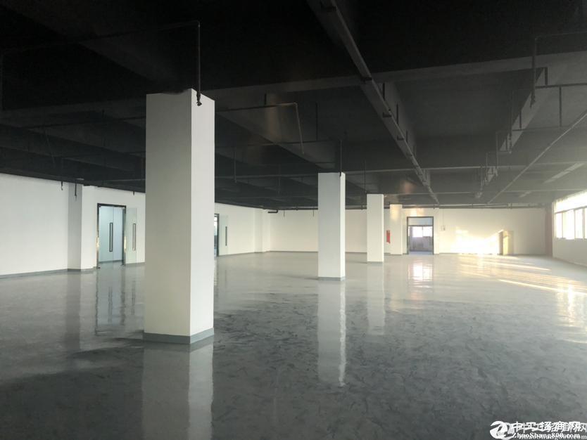 南山西丽地铁口新出1000平厂房租金38办公生产仓库红本
