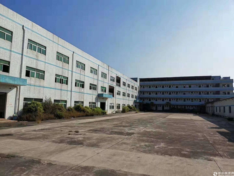 坪山原房东厂房6500平米出售,40年产权-图4