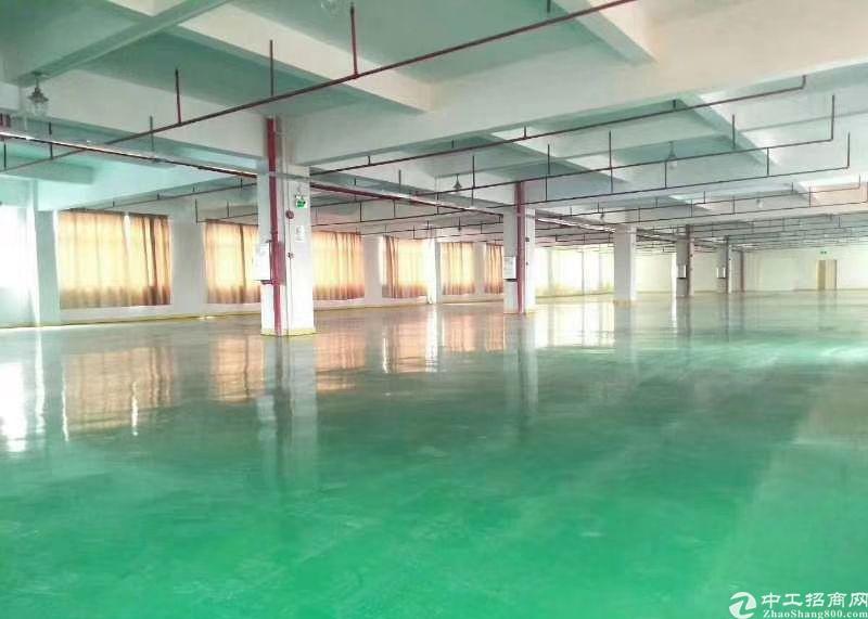 龙岗富民工业区原房东红本1楼厂房2150平方出租豪华装修