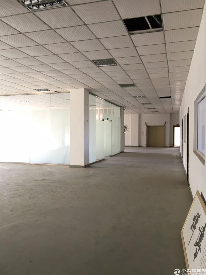 坪山坑梓楼上1000平米精装修红本厂房招租,,可办环评-图2