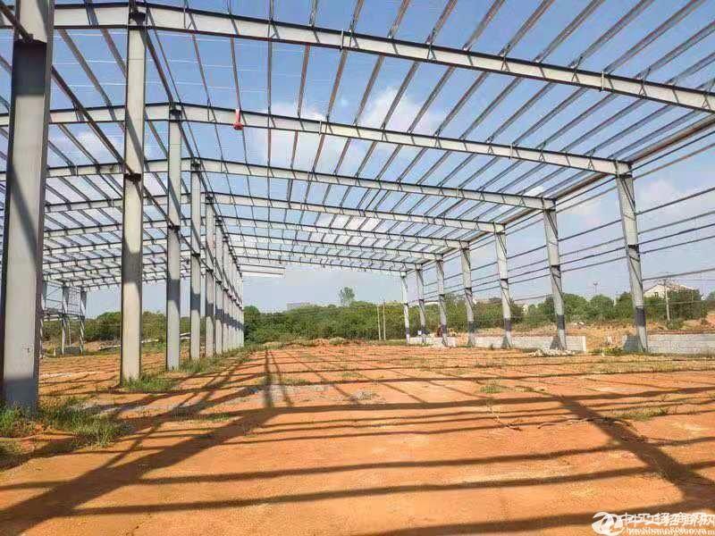 滠口汉口北区.12米钢构招租,带停车坪