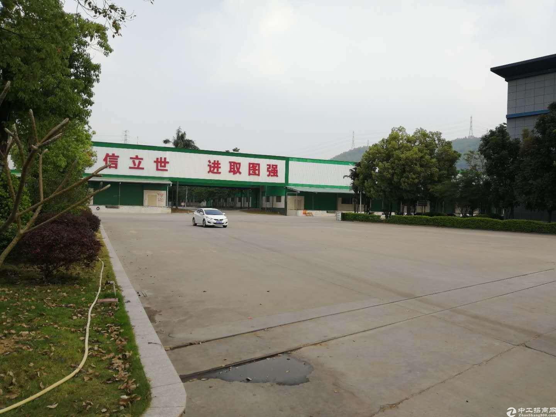 坪山一楼厂房仓库8000平米出租,15元可分租