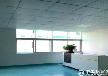 深圳坪山秀新楼上400平米精装修厂房出租,水电齐全图片1