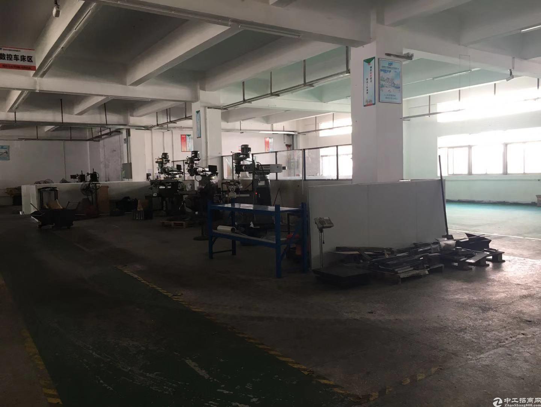 坪山碧岭工业区新出独院一楼500平招租
