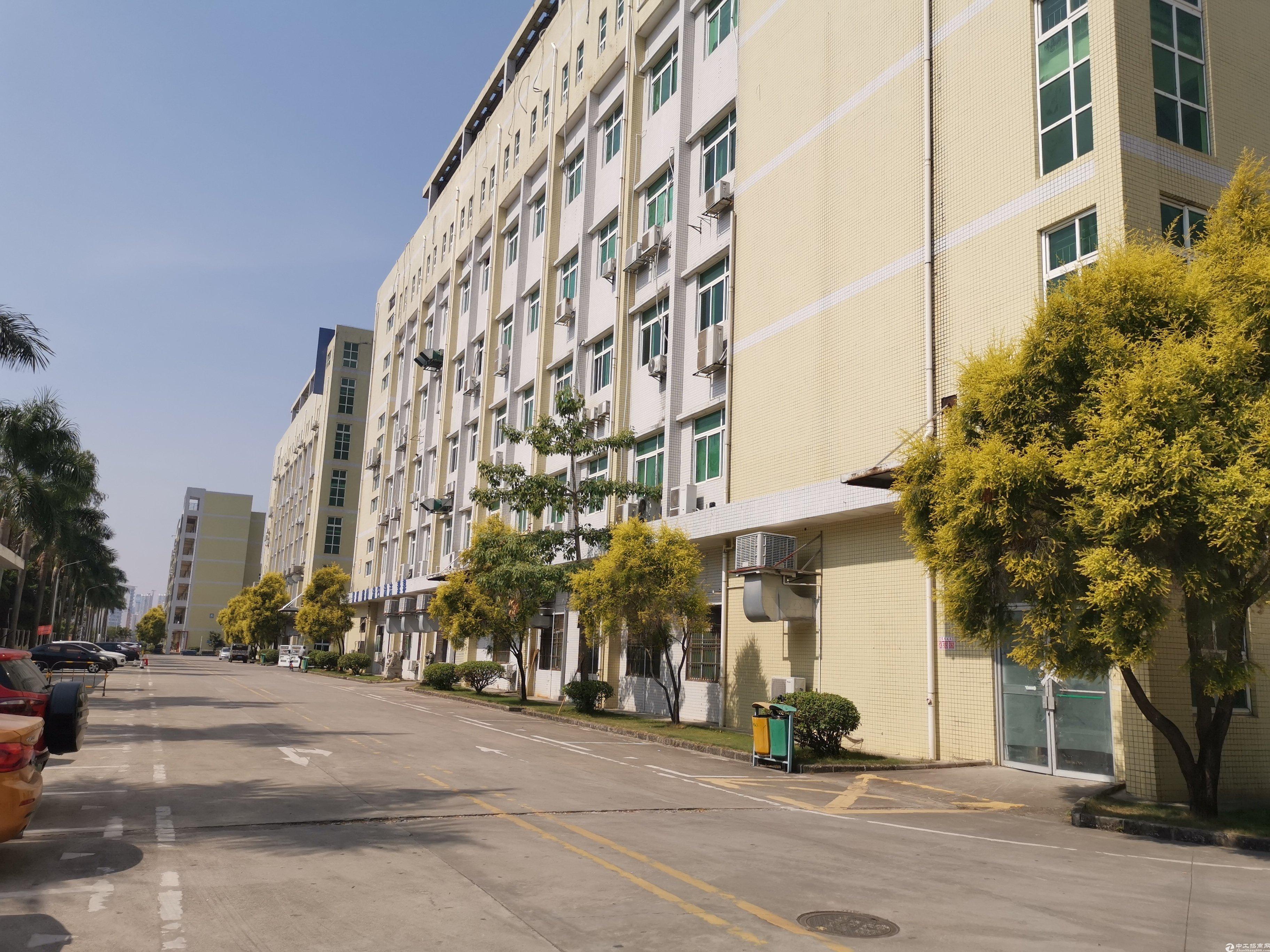 龙岗新生原房东楼上1500平红本厂房出租全新装修