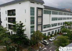 西丽花园式写字楼带红本800平使用率高,业主直租