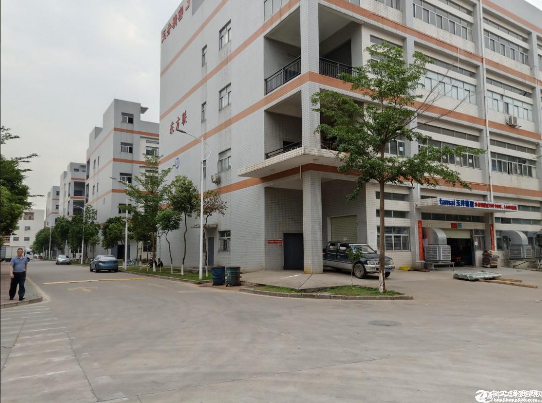 上雪科技园_一楼700平_厂房仓库出租_带精装阁楼办公室