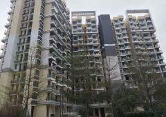 新建高新技术园区,单层2300平,1500平,也可整栋出租