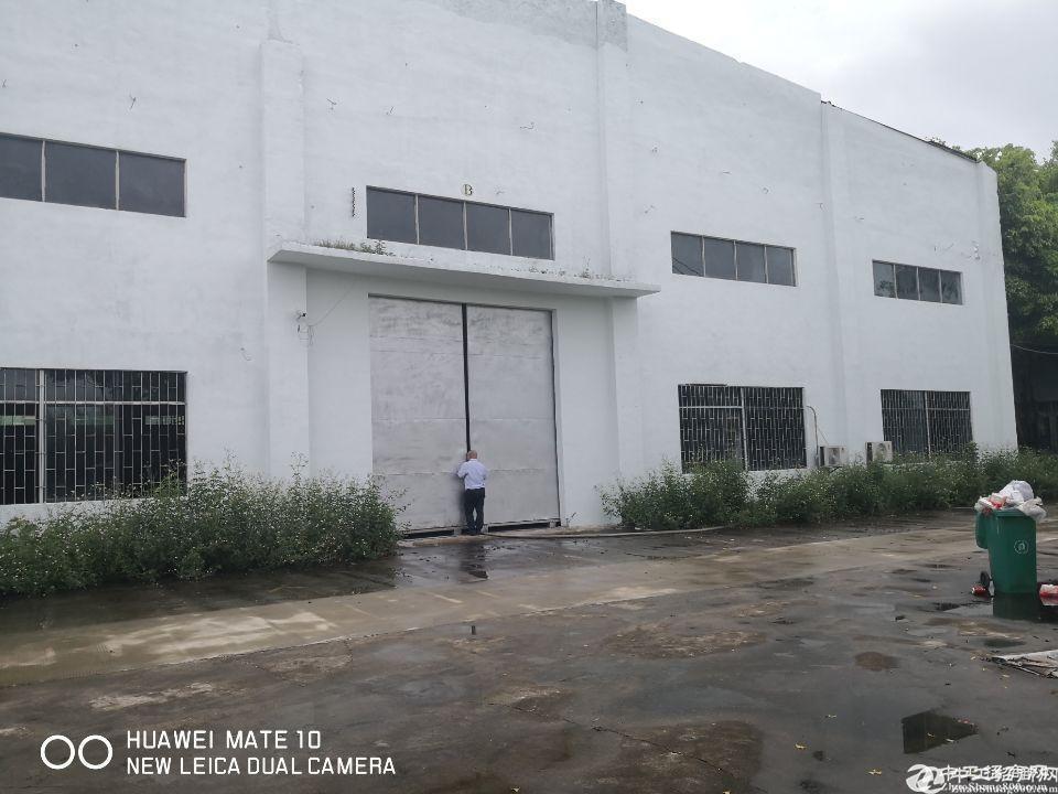 仓库厂房招租,一楼钢构1580平,坪山坑梓最低价位