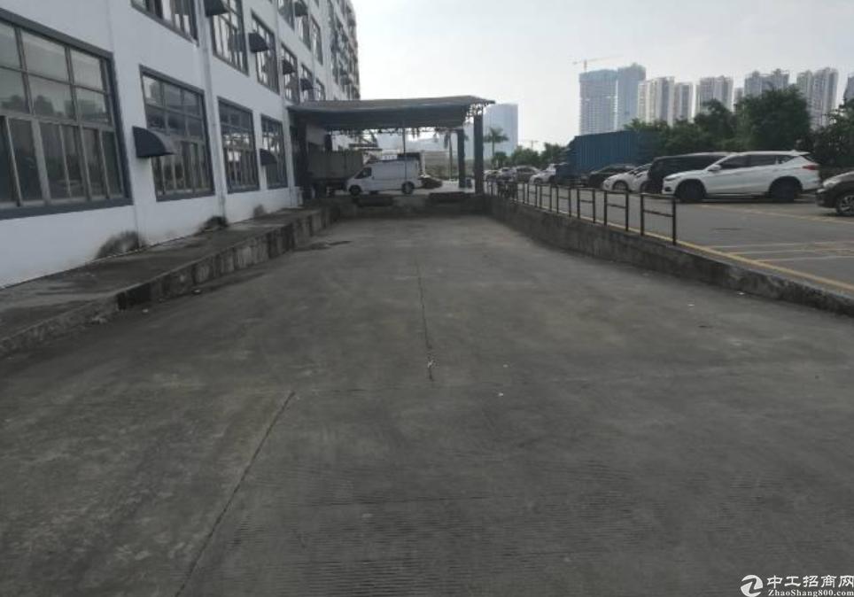深圳坪山主干道旁新出独门独院红本厂房3万平出售