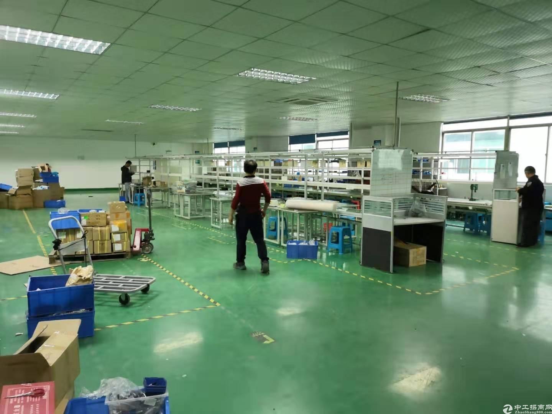 龙华大浪商业中心附近原房东厂房1500平带精装修不要转让费-图5