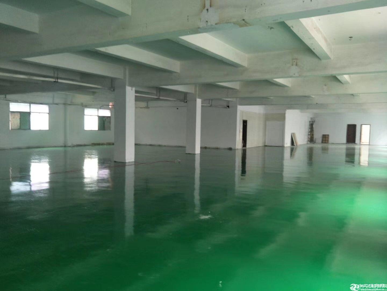平湖华南城电商园新出3楼厂房仓库680平方招租带精装修