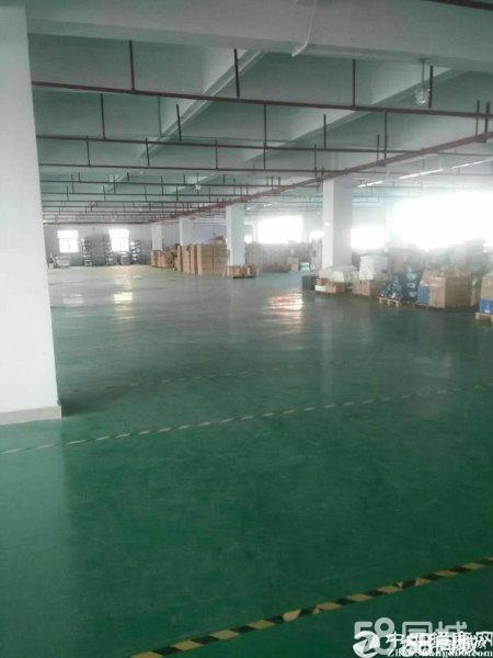 深圳平湖辅城拗工业区环评厂房1300平方米厂房仓库出租