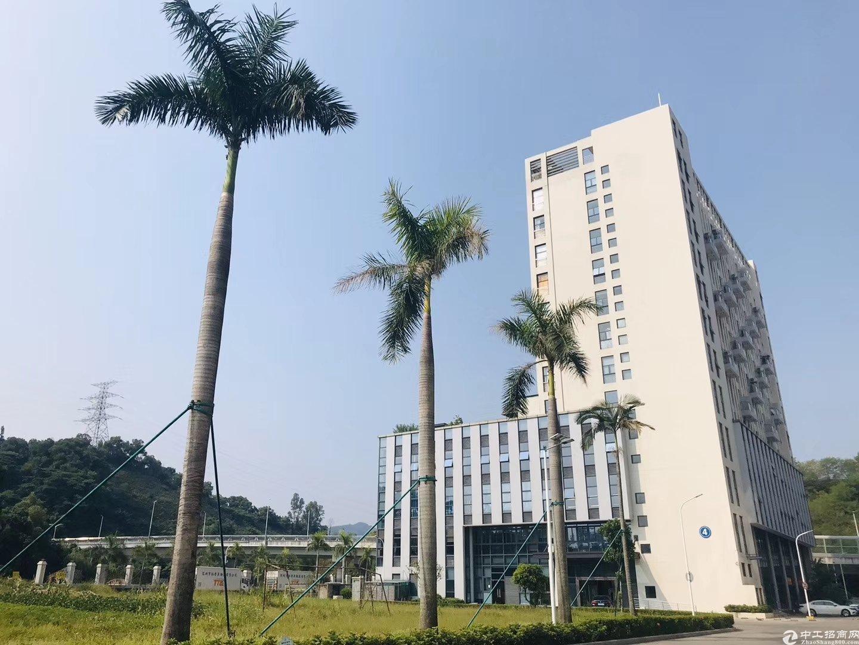 龙华大浪华宁路花园式厂房11200平招租,园区形象好招工。