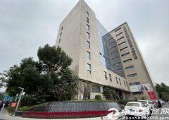 大浪电商基地豪华装修2000平,甲级高端办公50平起分
