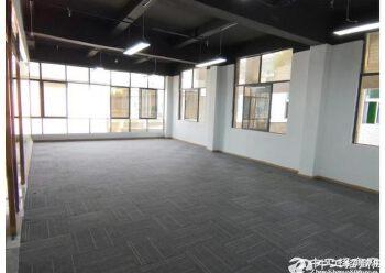 南联地铁站附近,280平创意园写字楼出租,精装修图片1