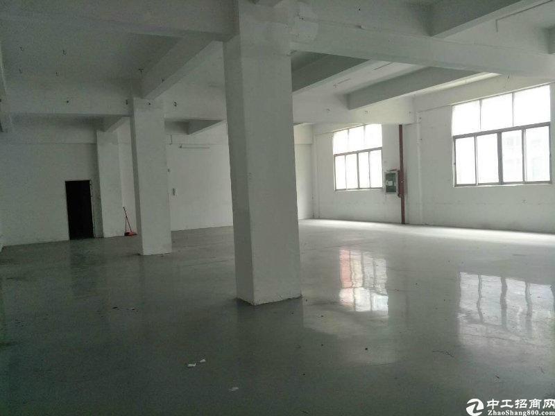 横岗工业园厂房精装办公室厂房仓库200至800平大小分租