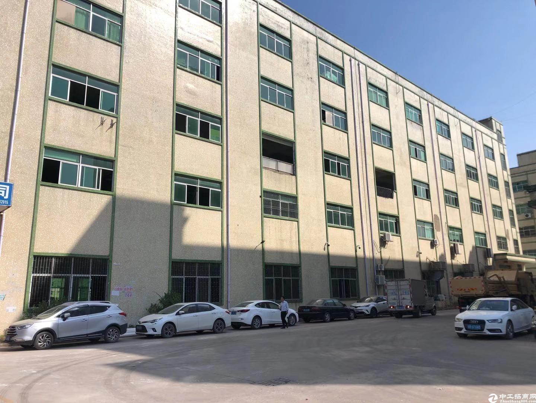 坑梓新空出一楼400平,带办公室和地坪漆