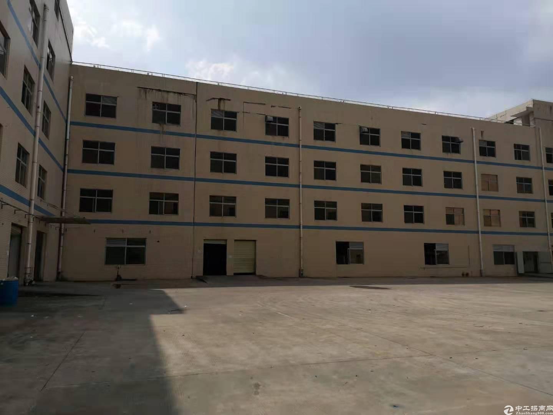 坪山大工业区原房东楼上6000平电商仓库厂房出租,可分租