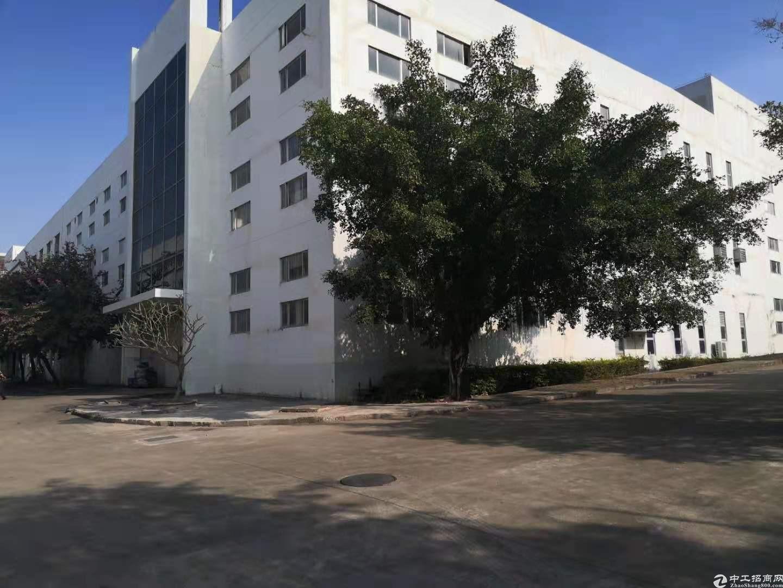 坪山坑梓工业区1楼1200平出租,有红本带装修