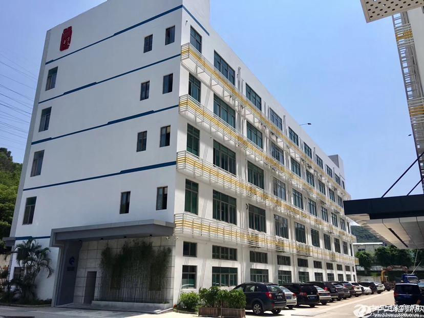 南山西丽茶光地铁口340平米精装修厂房可做办公仓库