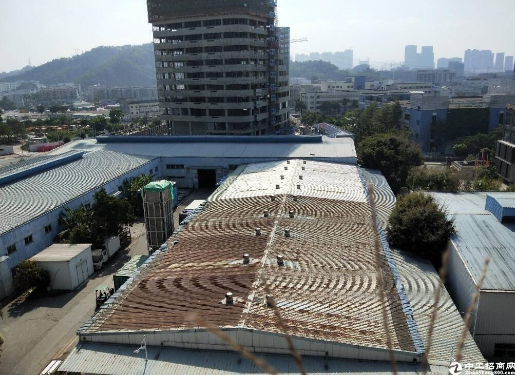 坂田独院厂房占地15700平国有双证出售