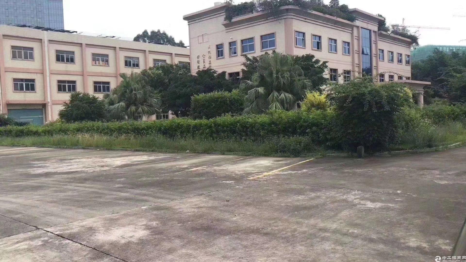 龙岗平湖精致小独院出售