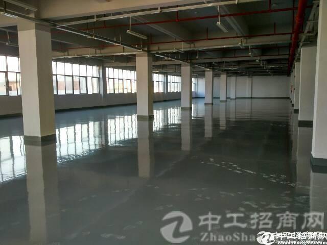 新出楼上2100平米漂亮的厂房火热招租