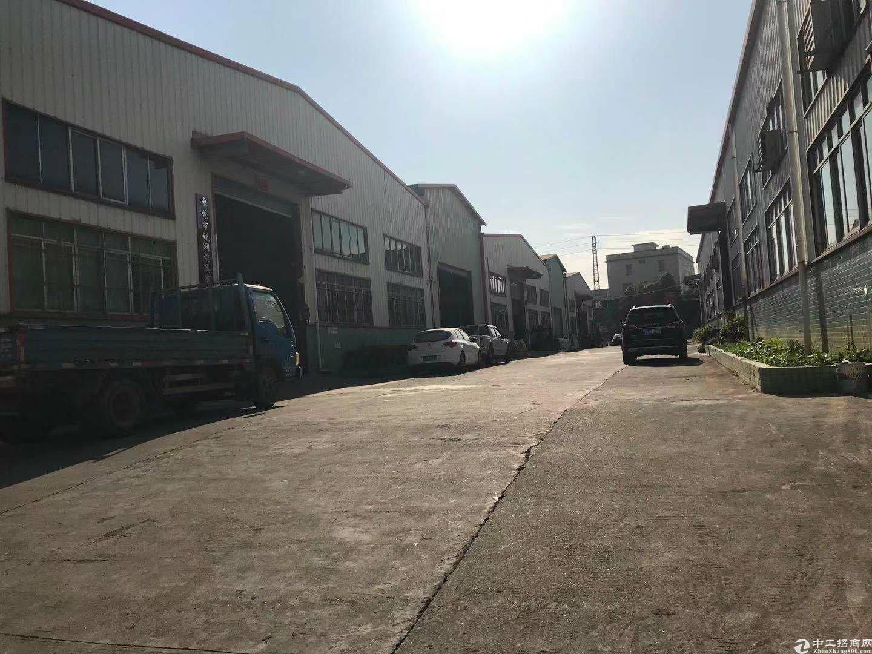 深圳龙岗布吉新出国有证厂房1万平方钢构厂房出售