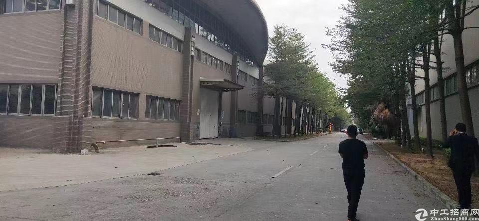 单一层厂房15万平方,绝世丙二级消防,位置好,可分租-图2