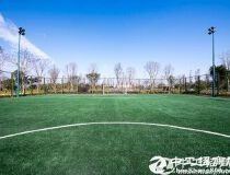 深圳工业地皮20000亩出售政府招商引资政策优惠50亩起分