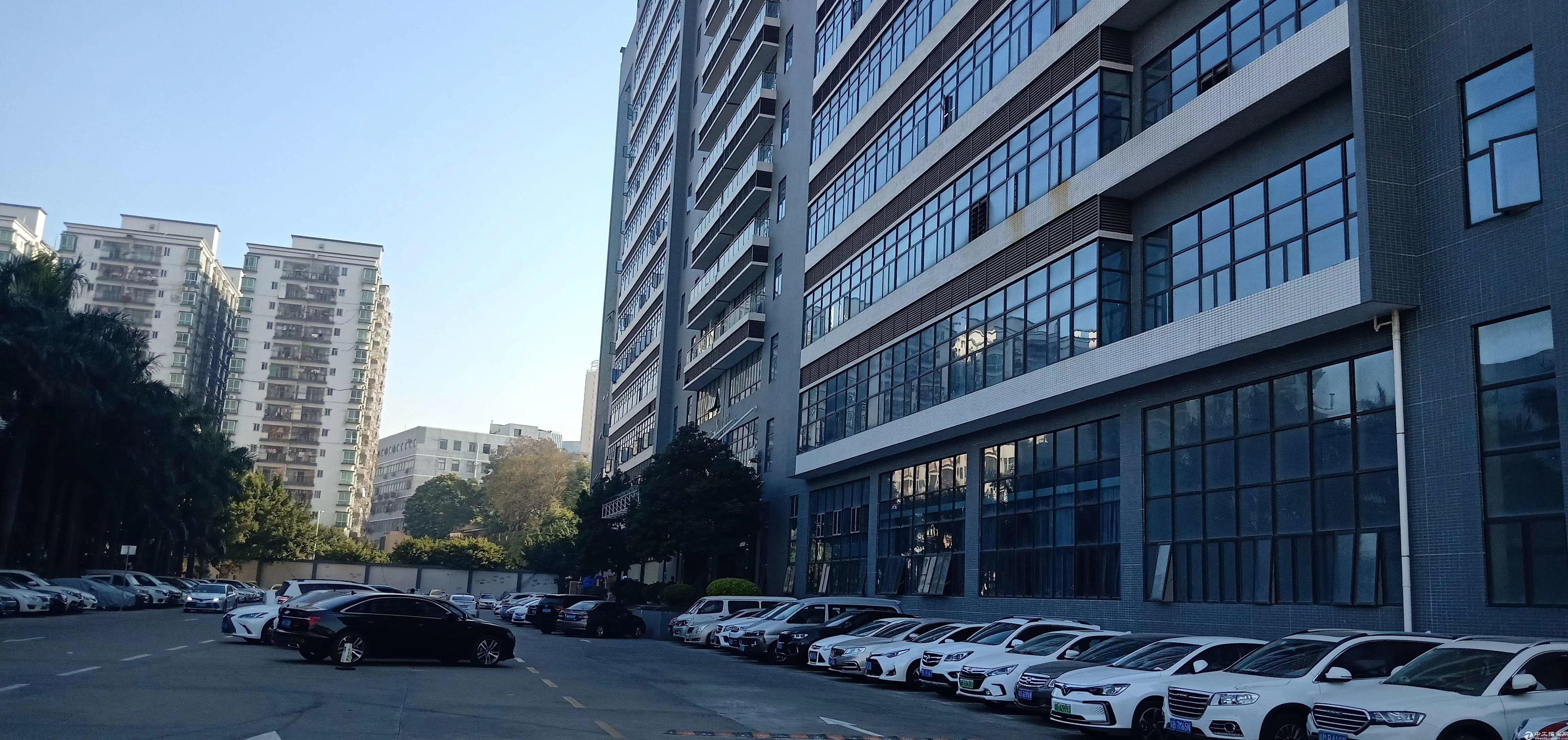 南山西丽楼上1600平米豪华装修厂房免费用