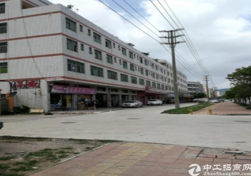 深圳龙岗高速路旁红本独院标准厂房出售