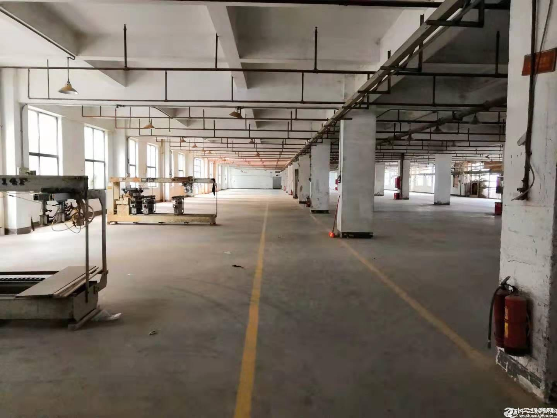 坪山竹坑工业区带装修厂房一楼500平方出租,采光好-图3