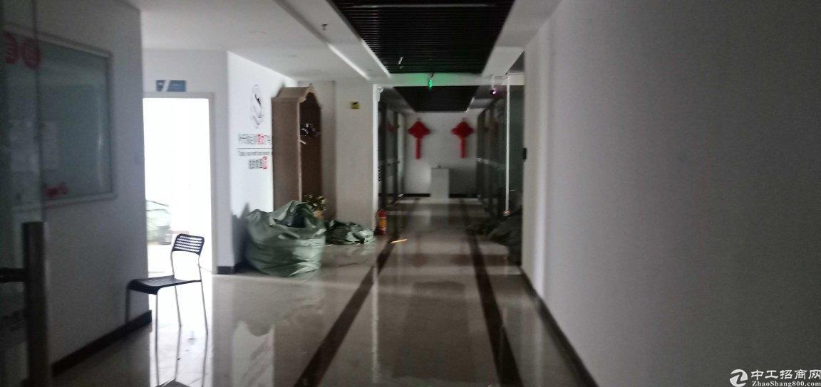 龙华大浪高档工业园服装基地原房东精装修2800平整层面积实在