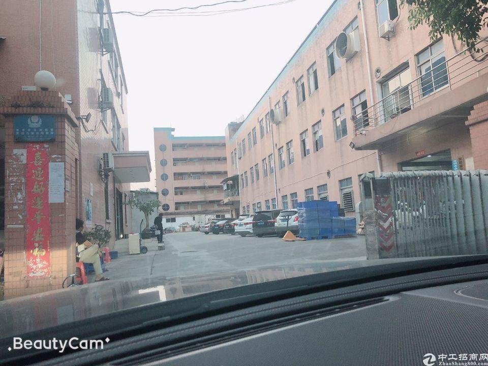 深圳观澜红本独门独院15000平米厂房出售