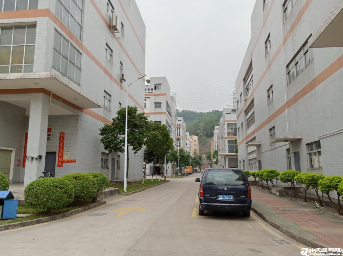 中山17777平原房东红本厂房出售