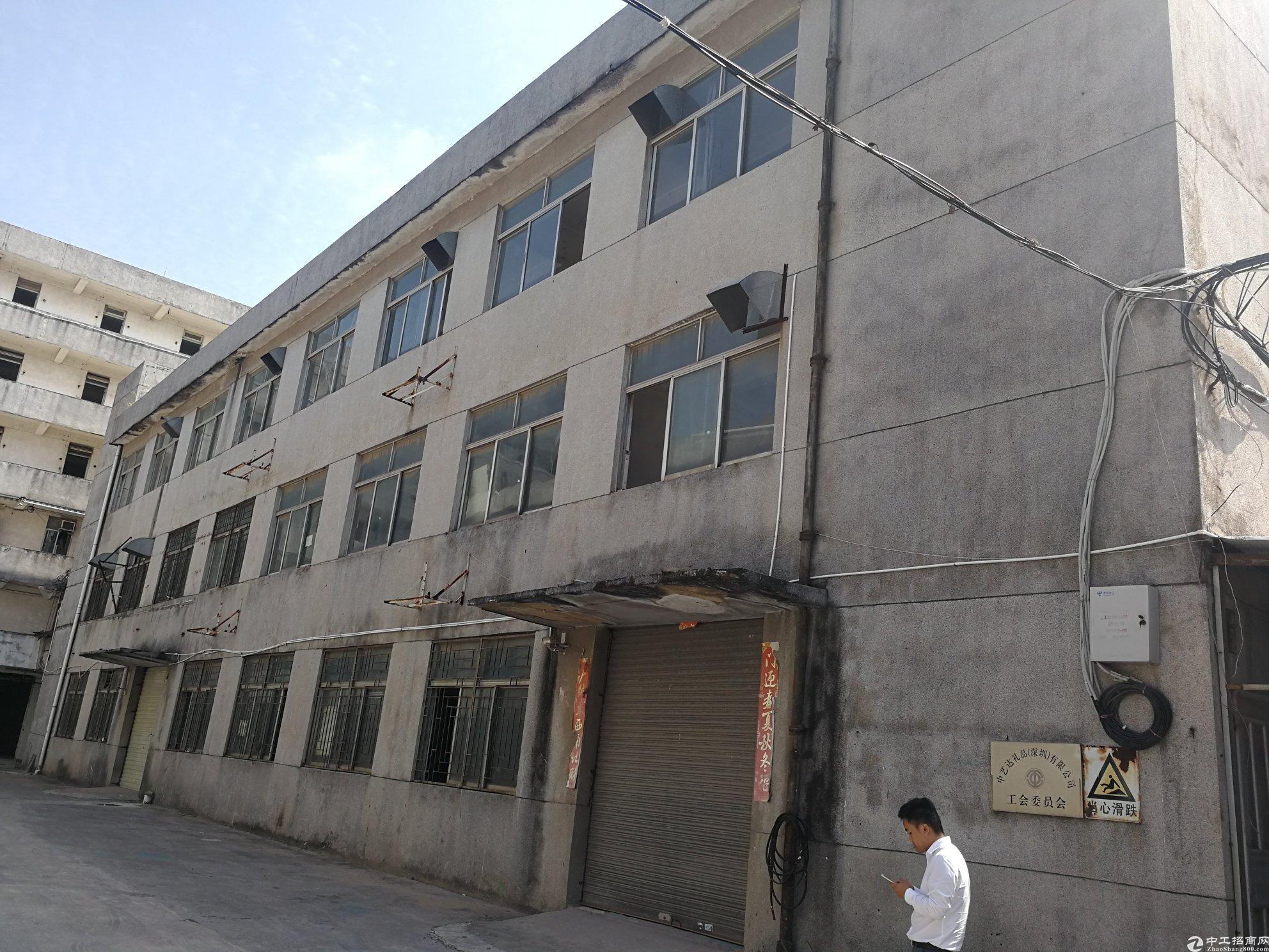 深圳横岗5378平独院国有证标准厂房出售-图3